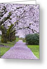 A Pink Pathway Greeting Card