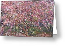 A Pink Tree Greeting Card