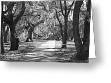 A Place For Contemplation - Black And White Greeting Card