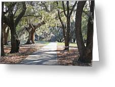 A Place For Contemplation  Greeting Card