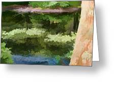 A Pond Reflection Greeting Card