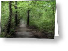 A Preview Of Speulderbos Greeting Card