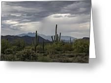 A Rainy Desert Afternoon  Greeting Card