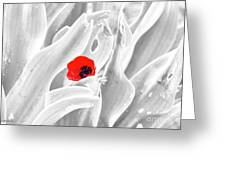 A Red Dot Greeting Card