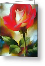 A Red Rose For Amelia Greeting Card