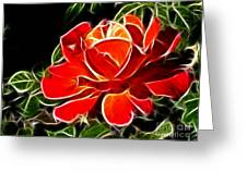 A Red Rose For You Greeting Card