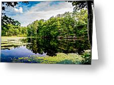 A Reflected Forest On A Lake With Lily Pads Greeting Card