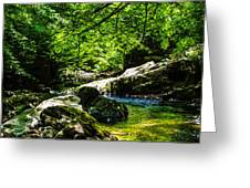 A Relaxing Place To Be Greeting Card