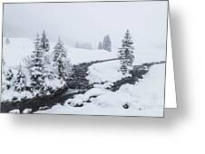 A River And Winter Landscape In Austria Greeting Card