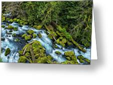 A River's Path Greeting Card