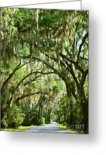 A Road To The Inside Just Outside Of Savannah Greeting Card