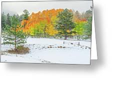 A Roadside Neve  Greeting Card