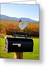A Rooster Above A Mailbox 2 Greeting Card