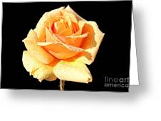 A Rose By Any Other Name Would Smell As Sweet Greeting Card