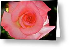 A Rose For Mary Greeting Card