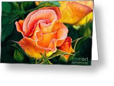 A Rose For Nan Greeting Card by Amanda Jensen