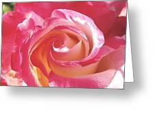 A Rose's Heart  Greeting Card