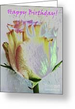A Rosy Birthday Wish Greeting Card