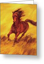 A Running Horse Greeting Card