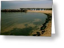 A Sea Of Seaweed Greeting Card
