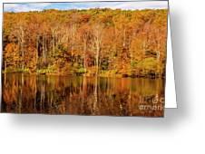 A Season Of Reflection Greeting Card