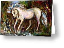 A Secret Place White Hores Painting Greeting Card
