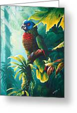 A Shady Spot - St. Lucia Parrot Greeting Card