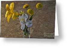 A Shot Of Colors Greeting Card