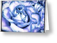 A Single Rose Can Be My Garden, A Greeting Card by Mr Photojimsf