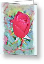 A Single Rose In October Greeting Card