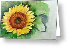 A Single Sunflower Greeting Card
