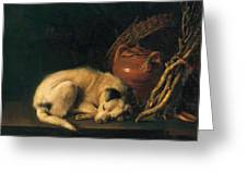A Sleeping Dog With Terracotta Pot 1650 Greeting Card