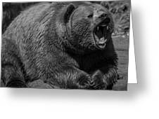 A Slightly Upset Grizzly Bear Greeting Card