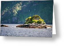 A Small Rocky Island At Doubtful Sound Greeting Card