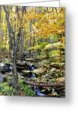 A Smokey Mountain Stream  Greeting Card