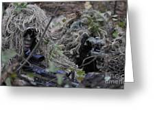 A Sniper Team Spotter And Shooter Greeting Card