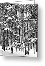 A Snowy Day Bw Greeting Card
