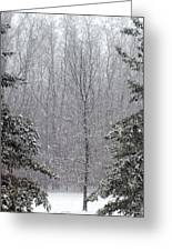 A Snowy Day In The Woods Greeting Card