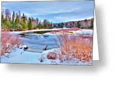 A Snowy Moose River Greeting Card