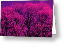 A Splash Of Purple Greeting Card