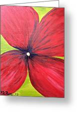A Splash Of Red Greeting Card