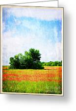A Spring Day In Texas Greeting Card