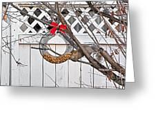 A Squirrel Christmas Greeting Card