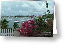 A St Maarten Marina Greeting Card