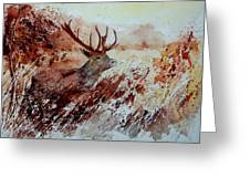 A Stag Greeting Card