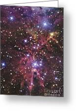 A Stellar Nursery Located Towards Greeting Card