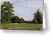 A Streak Of Sun - Queeny Park Greeting Card