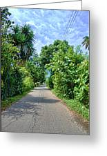 A Street Between Trees Greeting Card