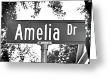 Am - A Street Sign Named Amelia Greeting Card