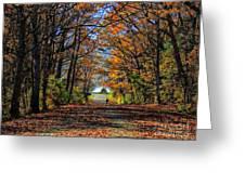 A Stroll Through Autumn Colors Greeting Card